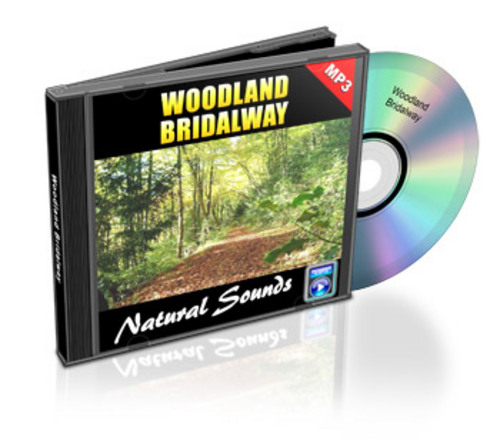 Product picture Woodland Bridalway ROYALTY FREE Natural Sounds